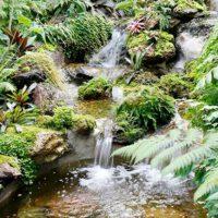 6 วิธีจัดสวนสวยทิศตะวันตก คลายร้อนให้บ้านเย็น