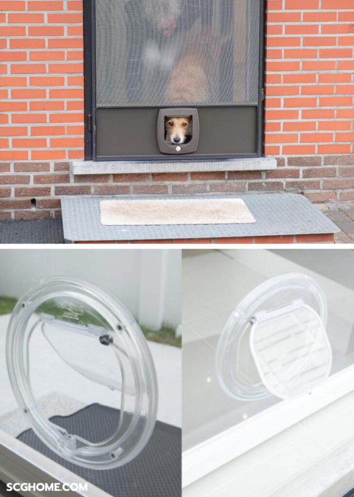 ภาพ: ประตูมุ้งลวด Pet Screen สำหรับบ้านที่มีสัตว์เลี้ยงแสนซน ที่มีช่องสำหรับน้องแมวน้องหมาให้เดินเข้าออกได้เอง